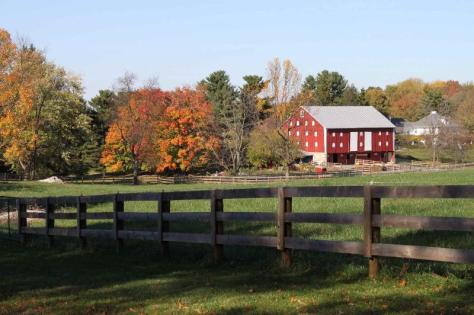 pastoral scene_farm and production