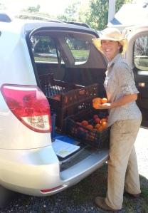 Farmer Amanda donates 200 lbs. of surplus organic tomatoes.