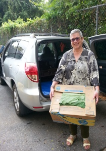 Sandra at Interfaith Works shows off beautiful collard greens donated by Plow and Stars farm.