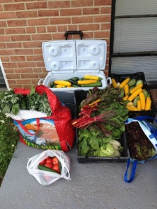 Meals on Wheels Takoma Park hired a low-income student for meals drop off.